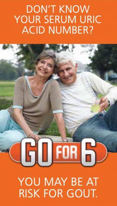 Go For Six: Brochure